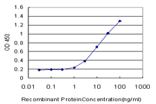E - MRPS27 Antibody (monoclonal) (M06) AT2904a