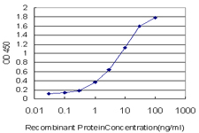 E - MSH5 Antibody (monoclonal) (M08) AT2911a