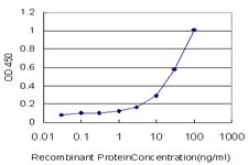 E - MSH6 Antibody (monoclonal) (M01) AT2912a