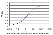 E - MYH9 Antibody (monoclonal) (M05) AT2949a
