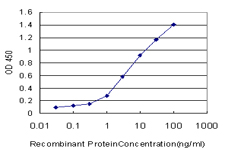 E - NDE1 Antibody (monoclonal) (M01) AT2987a