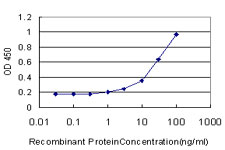 E - NDST3 Antibody (monoclonal) (M01) AT2997a