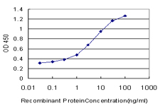 E - NFE2L2 Antibody (monoclonal) (M03) AT3031a
