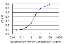 E - NFIC Antibody (monoclonal) (M03) AT3034a
