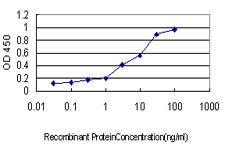 E - NFX1 Antibody (monoclonal) (M01) AT3039a