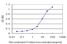 E - NHP2L1 Antibody (monoclonal) (M02) AT3049a