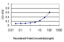 E - NME1 Antibody (monoclonal) (M01) AT3064a