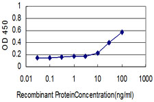 E - ORC2L Antibody (monoclonal) (M01) AT3152a