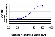 E - PLD2 Antibody (monoclonal) (M01) AT3337a