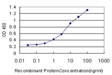 E - PPIL2 Antibody (monoclonal) (M02) AT3404a