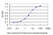 E - PSCD2 Antibody (monoclonal) (M02) AT3450a