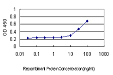 E - PSCD3 Antibody (monoclonal) (M01) AT3451a