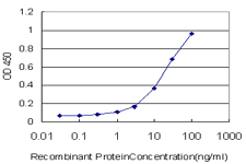 E - RBMS2 Antibody (monoclonal) (M04) AT3598a