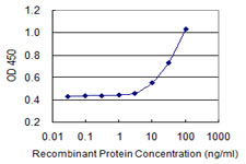 E - RIN2 Antibody (monoclonal) (M04) AT3643a