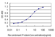 E - S100A13 Antibody (monoclonal) (M01) AT3753a