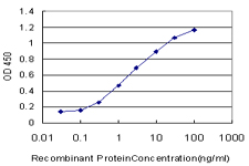 E - SCARB2 Antibody (monoclonal) (M01) AT3784a