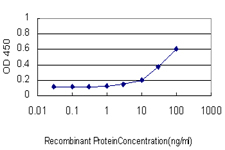 E - SMAD1 Antibody (monoclonal) (M02) AT3936a