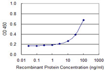E - SMAD3 Antibody (monoclonal) (M09) AT3941a