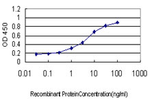 E - TCEB3 Antibody (monoclonal) (M01) AT4180a