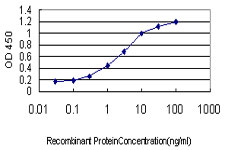 E - TNFRSF8 Antibody (monoclonal) (M01) AT4283a