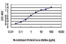 E - TTN Antibody (monoclonal) (M09) AT4394a