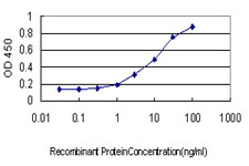 E - USF2 Antibody (monoclonal) (M01) AT4478a
