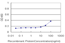 E - USF2 Antibody (monoclonal) (M02) AT4479a