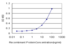 E - VRK2 Antibody (monoclonal) (M01) AT4522a
