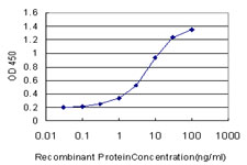 E - WDR5 Antibody (monoclonal) (M01) AT4533a