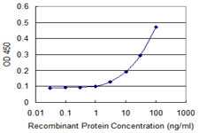 E - WDR77 Antibody (monoclonal) (M01) AT4536a