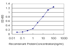 E - ZNF259 Antibody (monoclonal) (M01) AT4614a