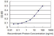 E - ZNF346 Antibody (monoclonal) (M01) AT4629a