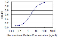 E - ZWINT Antibody (monoclonal) (M04) AT4652a