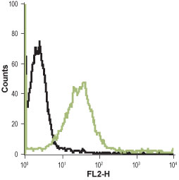 IF - Human H4 Histamine Receptor (extracellular) Antibody AG1224-050