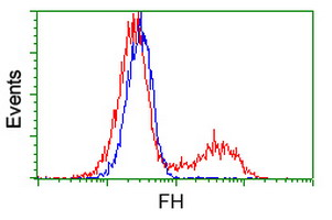 FC - FH / Fumarase / MCL Antibody (clone 9G4) ALS17057