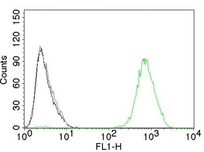 FC -  EGFR (Epidermal Growth Factor Receptor) Antibody - Without BSA and Azide AH10437