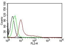 FC -  Ku (p70/p80) (Nuclear Marker) Antibody - Without BSA and Azide AH10476