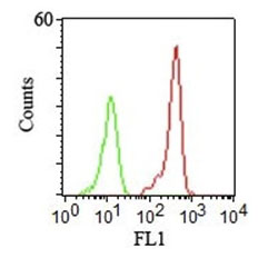 FC -  CD46 (Membrane Cofactor Protein) Antibody - Without BSA and Azide AH10594-100