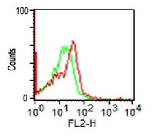 FC -  CD56 / NCAM1 (Neuronal Cell Marker) Antibody - Without BSA and Azide AH10628-100