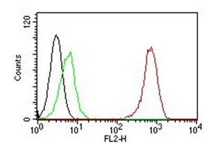 FC -  CD31 / PECAM-1 (Endothelial Cell Marker) Antibody - Without BSA and Azide AH10654-100