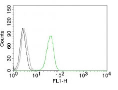 FC -  CD31 / PECAM-1 (Endothelial Cell Marker) Antibody - Without BSA and Azide AH10655