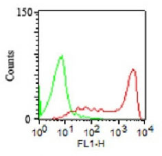FC -  CD45RA (Leucocyte Marker) Antibody - Without BSA and Azide AH10690-100