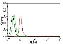 FC -  Cyclin D1 (G1-Cyclin & Mantle Cell Marker) Antibody - Without BSA and Azide AH10713-100