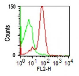 FC -  CD43 (T-Cell Marker) Antibody - Without BSA and Azide AH10745