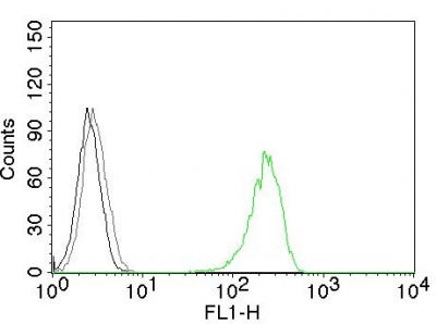 FC -  CD71 / Transferrin Receptor (TFRC) Antibody - Without BSA and Azide AH10751-100