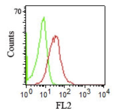FC -  CD1b (T-Cell Surface Glycoprotein) Antibody - Without BSA and Azide AH10836-100