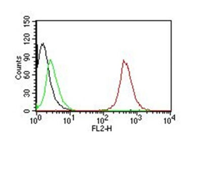 FC -  CD63 (Late Endosomes Marker) Antibody - Without BSA and Azide AH10882-100