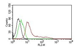 FC -  Human Nuclear Antigen (HNA) (Human Cell Marker) Antibody - Without BSA and Azide AH10966