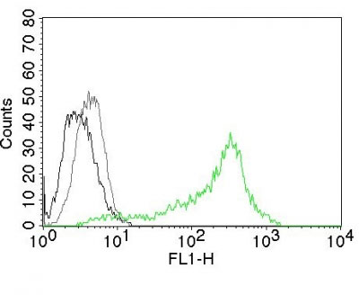 FC -  Nucleolin (Marker of Human Cells) Antibody - With BSA and Azide AH11984-20