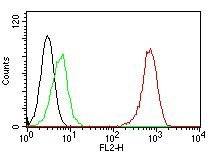 FC -  CD31 / PECAM-1 (Endothelial Cell Marker) Antibody AH12059-05